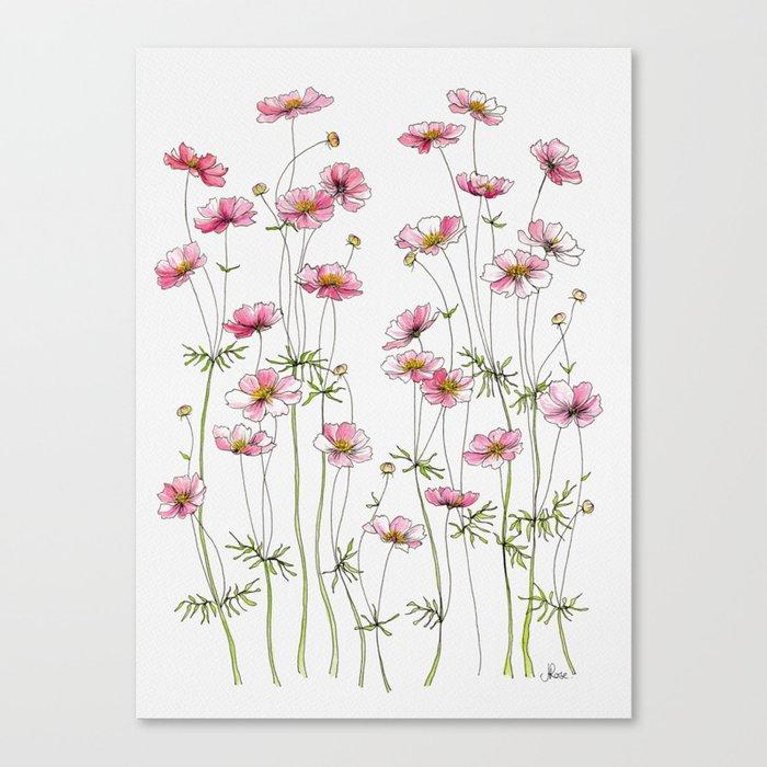 Pink Cosmos Flowers Leinwanddruck