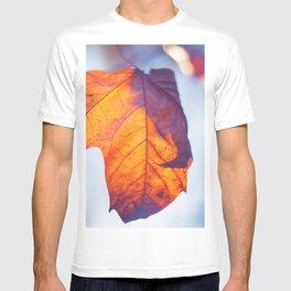 Shine in my Heart T-shirt