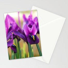 Miniature purple irises Stationery Cards