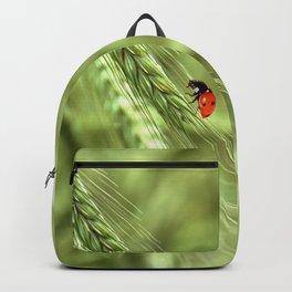 Ladybug 39 Backpack
