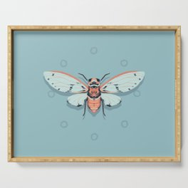 Orange and Blue Insect Serving Tray