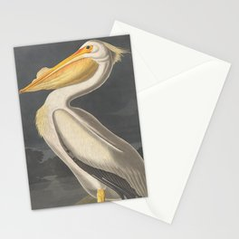Vintage Illustration of a White Pelican (1863) Stationery Cards