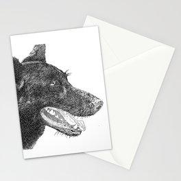 z dog 2 Stationery Cards