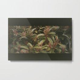 Dried Up Metal Print