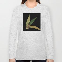 Three Eucalyptus Leaves: A Minimalist Perspective Long Sleeve T-shirt