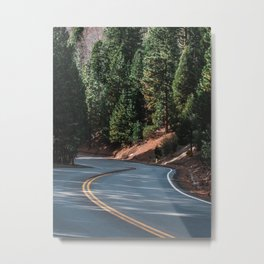 The road through the woods and mountains Metal Print