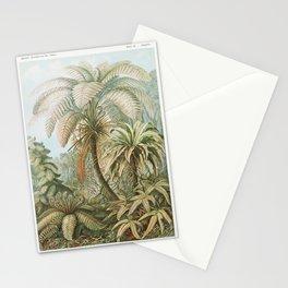 Filicinae-Laubfarne from Kunstformen der Natur (1904) by Ernst Haeckel Stationery Cards