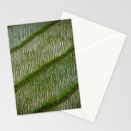 Wild Rice Stationery Cards