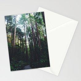 Muir Woods, California II Stationery Cards