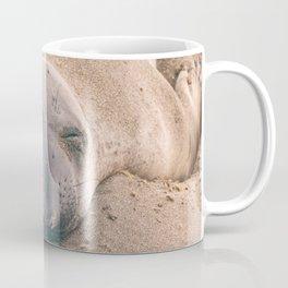 Sleeping Seal Coffee Mug