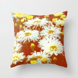 ABSTRACT GARDEN WHITE SHASTA DAISIES ON CHOCOLATE BROWN ART Throw Pillow
