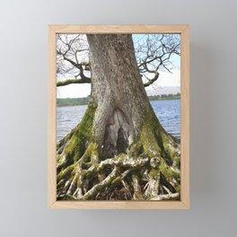 Fairies Welcome Framed Mini Art Print