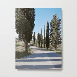 a road in tuscany Metal Print