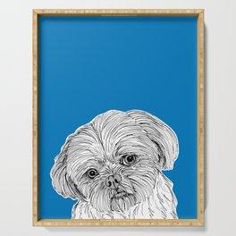 Shih Tzu Dog Portrait ( blue background ) Serving Tray