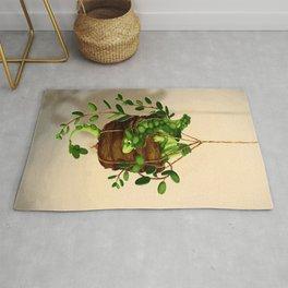 Succulent dragon Rug