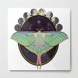 Indian moon Moth Metal Print