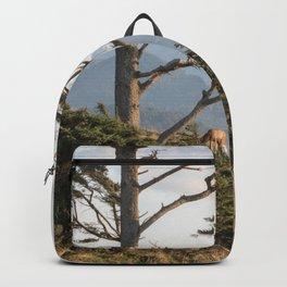 Clifftop Grazing Backpack