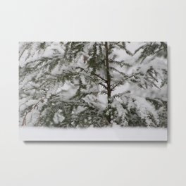 Winter in Maine Metal Print