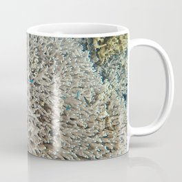 Large Pacific Ocean corals Coffee Mug