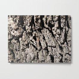 TEXTURES: Englemann Oak Bark Metal Print