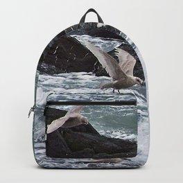 Gulls shop for Dinner Backpack