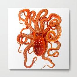 Vintage Octopus Metal Print