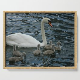 Mute Swan & Cygnets Serving Tray