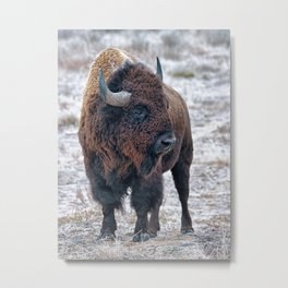 In The Presence Of Bison #society6 #decor #bison by Lena Owens @OLena Art Metal Print