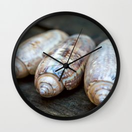 Three Olive Shells Wall Clock