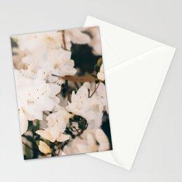 White Mini azaleas #floral Stationery Cards