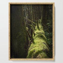 Fallen Forest Serving Tray