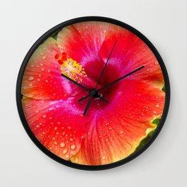 tropical morning Wall Clock