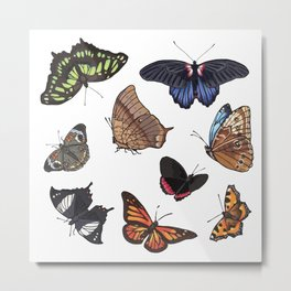 Butterfly Sticker Collection Metal Print