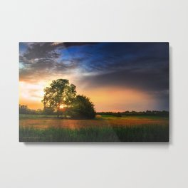 Two trees in the field Metal Print