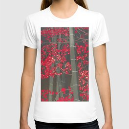 Bamboo and Fall Red leaves of Kyoto maple trees T-shirt