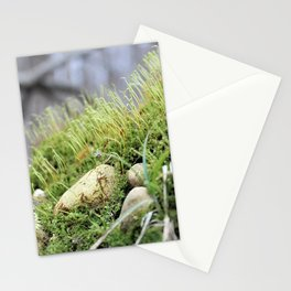 Moss & Rocks Stationery Cards