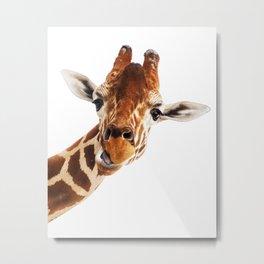 Giraffe Portrait // Wild Animal Cute Zoo Safari Madagascar Wildlife Nursery Decor Ideas Metal Print