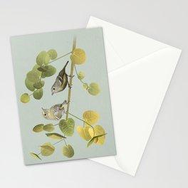 Vireos and Eucalyptus Stationery Cards