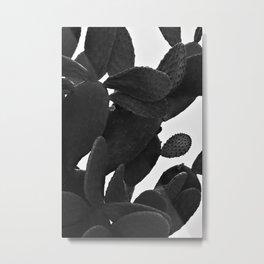 Cactus in Black And White Metal Print