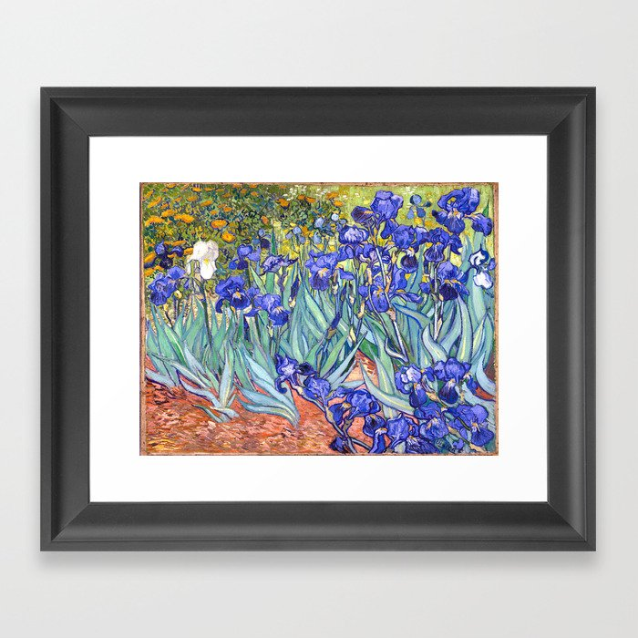 Vincent Van Gogh Irises Gerahmter Kunstdruck