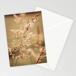 Golden Grass Stationery Cards