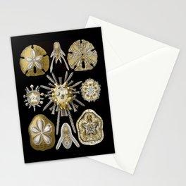 Ernst Haeckel Echinidea Sea Urchin Stationery Cards