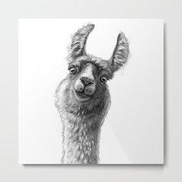Cute Llama G135 Metal Print