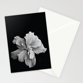 Hibiscus Drama Study - Black & White High Impact Photography Stationery Cards