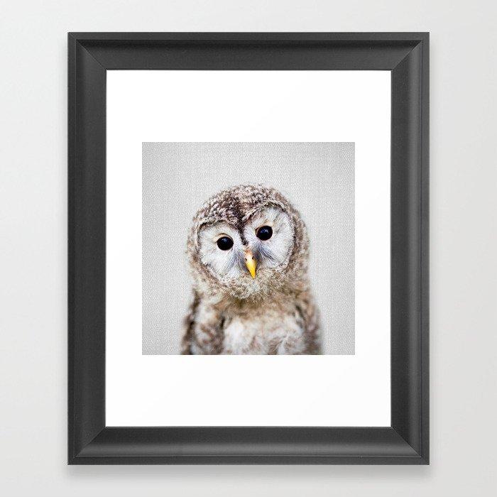 Baby Owl - Colorful Gerahmter Kunstdruck