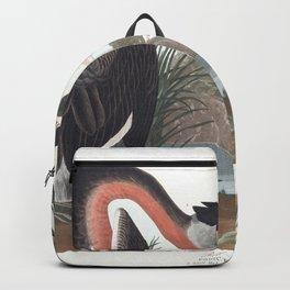 Red necked grebe, Birds of America, Audubon Plate 298 Backpack
