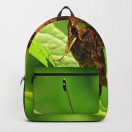Butterfly Insect Animal Backpack