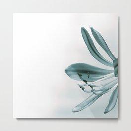 The Nile Lily Metal Print