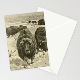 J Hyde - Big Game hunting for Boys, North America & Asia (1874) - Musk Ox Stationery Cards