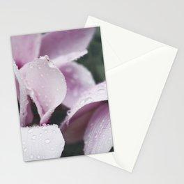 Pink Daisy still Life, flower fine art print, interior design, home decoration, bedroom Stationery Cards